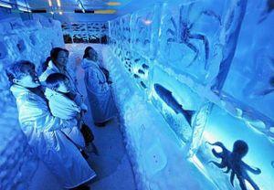 Frozen_aqarium