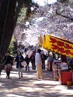 000syukugawa_2