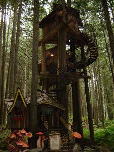 Tree_houses_05